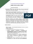 Ejemplo 02 de Plantilla de Curriculum en Ingles