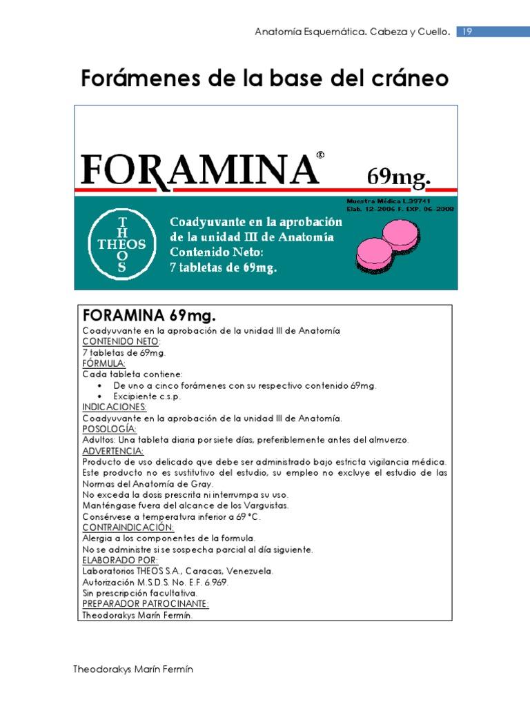 Foramenes Del Craneo