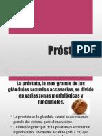 Próstata