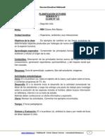 Evolución 8° Básico.pdf