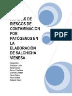AnÁlisis de Riesgos de ContaminaciÓn Por PatÓgenos