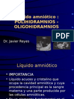 [Clase07 - Seminario 2] La Oligo y Polihidramnios (Dr Reyes)