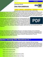 Dn Are Kombi Nan PDF