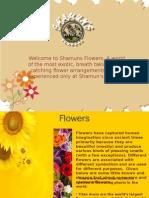 Shamuns Flowers Online Florist Pune
