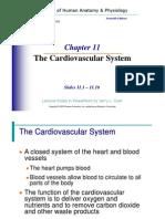 Chapter 11 jk.pdf