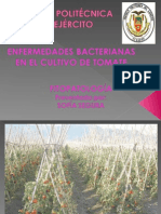 Enfermedades Bacterianas Tomate.ppt