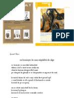 corpul-t-nr-1-2013.pdf