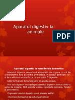 Aparatul digestiv  animale