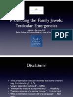 2015 testicular emergencies lecture-final-pdf