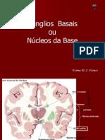 07_nucleos_basais