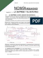 1 tema economia