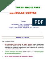 MENSULAS CORTAS