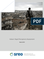 Kobani - Rapid Perceptions Assessment