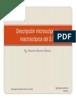 Descripcion Microscopica y Macroscopica Del Snc