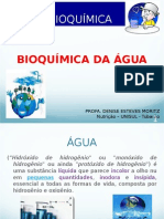 bioquimicas