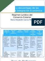 Ventajas y desventajas de las etapas de la integracion economica..pptx