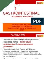 Anatomi Gastrointestinal 1