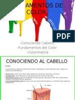 fundamentos de color capilar