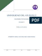 Pedro Nieto UDA-IP Well Loggin Article