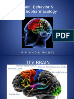 Brain, Behavior & Psychopharmacology