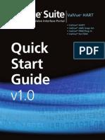 ValVue Quick Start HART v1