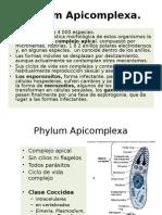 apicomplexaiparcial-121011183543-phpapp01