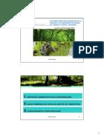 Ccdrc Defesa Floresta