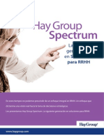 Hay Group Spectrum