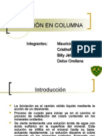 Lixiviacion Columnar