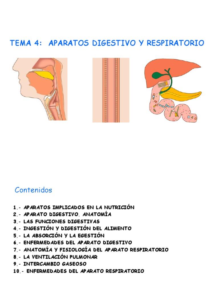 TEMA4. a. Digest. y Resp
