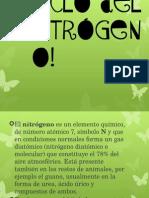 Ciclo Del Nitrogeno Presentacion