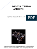 DIMENSION AMBIENTAL EDO-BRASIL.pdf