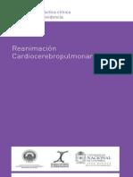 PH Reanimación1 081014 Digital