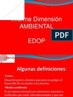 DIMENSION AMBIENTAL PERU.pdf