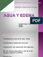 Agua y Edema