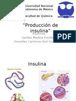 Intro Insulina
