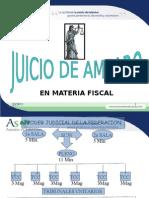 Amparo Fiscal Reforma Constnal