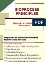 Bprocess Principles-Module