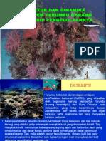 Struktur Dan Dinamika Ekosistem Terumbu Karang Dan Prinsip Pengelolaannya
