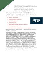 Generalidades - microbiologia