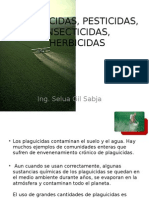 plaguicidaspesticidasinsecticidasherbicidas-131007222548-phpapp02