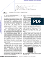 Synthesis of Monodisperse Iron Oxide Nanocrystals by Thermal Decomposition of Ir