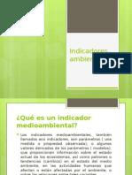Indicadores ambientales  tema fiscalizacion.pptx