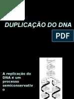 DNA - Mecanismo de duplicação