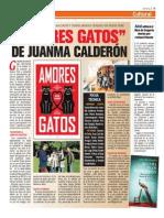 Juanma Amores Gatos