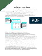 Datos de Registros Maestros