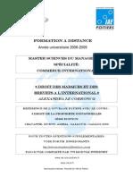 Msm Ci Esce_droit Des Marques Et Des Brevets a l'International_alecorroncq_08-09