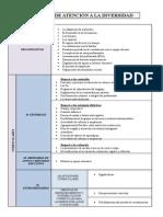 Cuadro Medidas de Atención a La Diversidad Academia 2013
