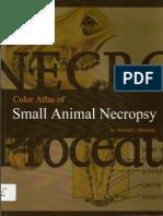 Color Atlas of Small Animal Necropsy 1