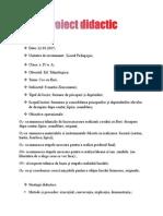 Proiect Didactic - Ed.teh-flori